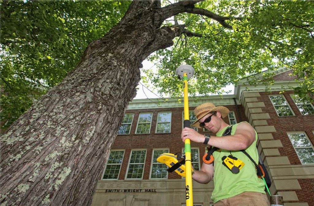 Arborist Consultations-North Lauderdale FL Tree Trimming and Stump Grinding Services-We Offer Tree Trimming Services, Tree Removal, Tree Pruning, Tree Cutting, Residential and Commercial Tree Trimming Services, Storm Damage, Emergency Tree Removal, Land Clearing, Tree Companies, Tree Care Service, Stump Grinding, and we're the Best Tree Trimming Company Near You Guaranteed!