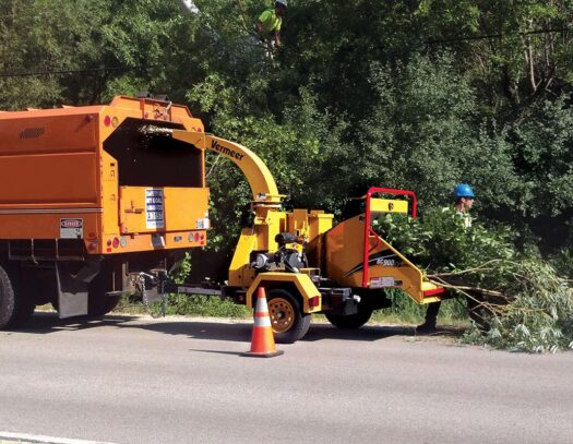 Commercial Tree Services-North Lauderdale FL Tree Trimming and Stump Grinding Services-We Offer Tree Trimming Services, Tree Removal, Tree Pruning, Tree Cutting, Residential and Commercial Tree Trimming Services, Storm Damage, Emergency Tree Removal, Land Clearing, Tree Companies, Tree Care Service, Stump Grinding, and we're the Best Tree Trimming Company Near You Guaranteed!