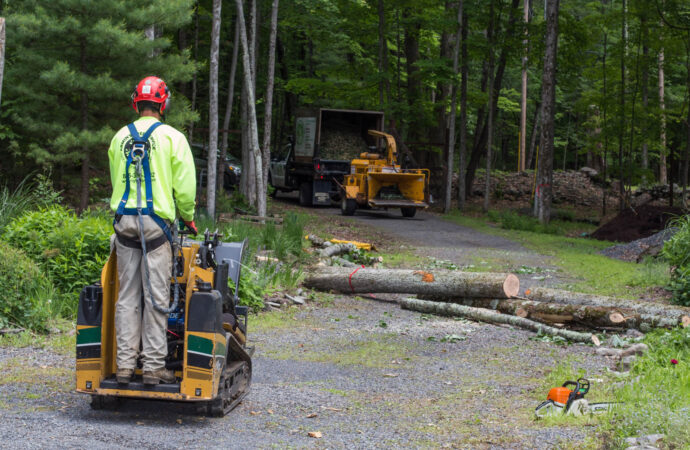Emergency Tree Removal-North Lauderdale FL Tree Trimming and Stump Grinding Services-We Offer Tree Trimming Services, Tree Removal, Tree Pruning, Tree Cutting, Residential and Commercial Tree Trimming Services, Storm Damage, Emergency Tree Removal, Land Clearing, Tree Companies, Tree Care Service, Stump Grinding, and we're the Best Tree Trimming Company Near You Guaranteed!
