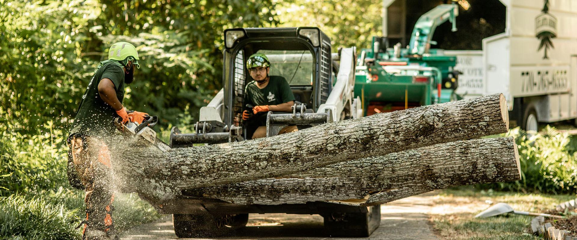 North Lauderdale FL Tree Trimming and Stump Grinding Services Home Page Image-We Offer Tree Trimming Services, Tree Removal, Tree Pruning, Tree Cutting, Residential and Commercial Tree Trimming Services, Storm Damage, Emergency Tree Removal, Land Clearing, Tree Companies, Tree Care Service, Stump Grinding, and we're the Best Tree Trimming Company Near You Guaranteed!