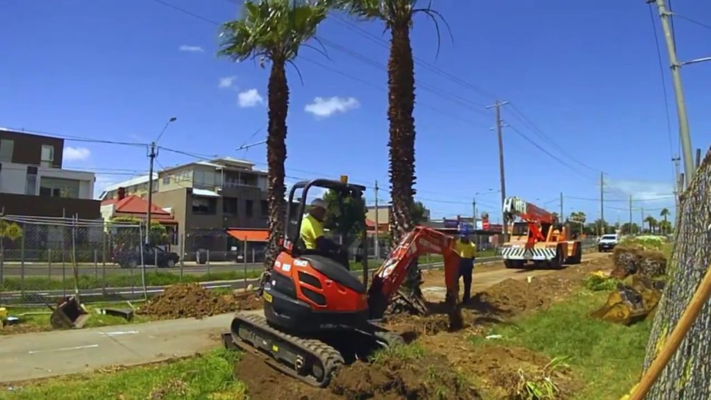 Palm Tree Removal-North Lauderdale FL Tree Trimming and Stump Grinding Services-We Offer Tree Trimming Services, Tree Removal, Tree Pruning, Tree Cutting, Residential and Commercial Tree Trimming Services, Storm Damage, Emergency Tree Removal, Land Clearing, Tree Companies, Tree Care Service, Stump Grinding, and we're the Best Tree Trimming Company Near You Guaranteed!