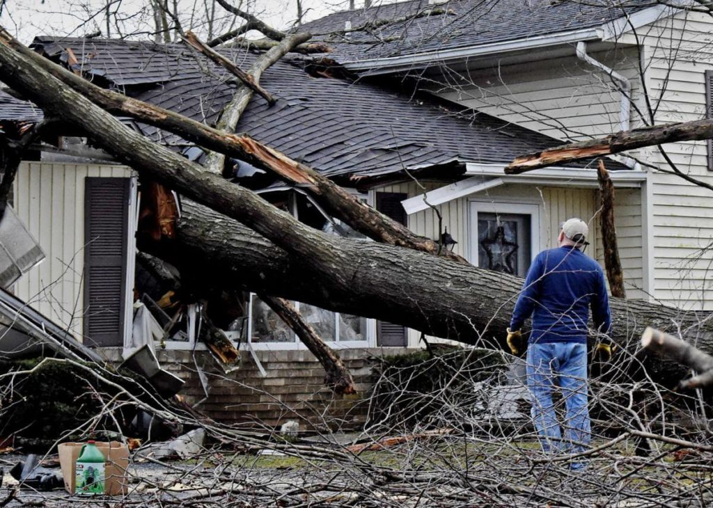 Storm Damage-North Lauderdale FL Tree Trimming and Stump Grinding Services-We Offer Tree Trimming Services, Tree Removal, Tree Pruning, Tree Cutting, Residential and Commercial Tree Trimming Services, Storm Damage, Emergency Tree Removal, Land Clearing, Tree Companies, Tree Care Service, Stump Grinding, and we're the Best Tree Trimming Company Near You Guaranteed!