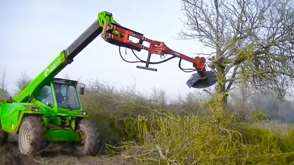 Tree Trimming Services-North Lauderdale FL Tree Trimming and Stump Grinding Services-We Offer Tree Trimming Services, Tree Removal, Tree Pruning, Tree Cutting, Residential and Commercial Tree Trimming Services, Storm Damage, Emergency Tree Removal, Land Clearing, Tree Companies, Tree Care Service, Stump Grinding, and we're the Best Tree Trimming Company Near You Guaranteed!